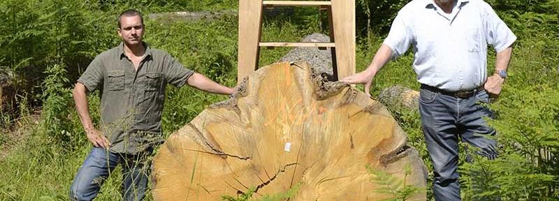 La scierie Mommert et les meubles éco-responsables fabriqués en Normandie